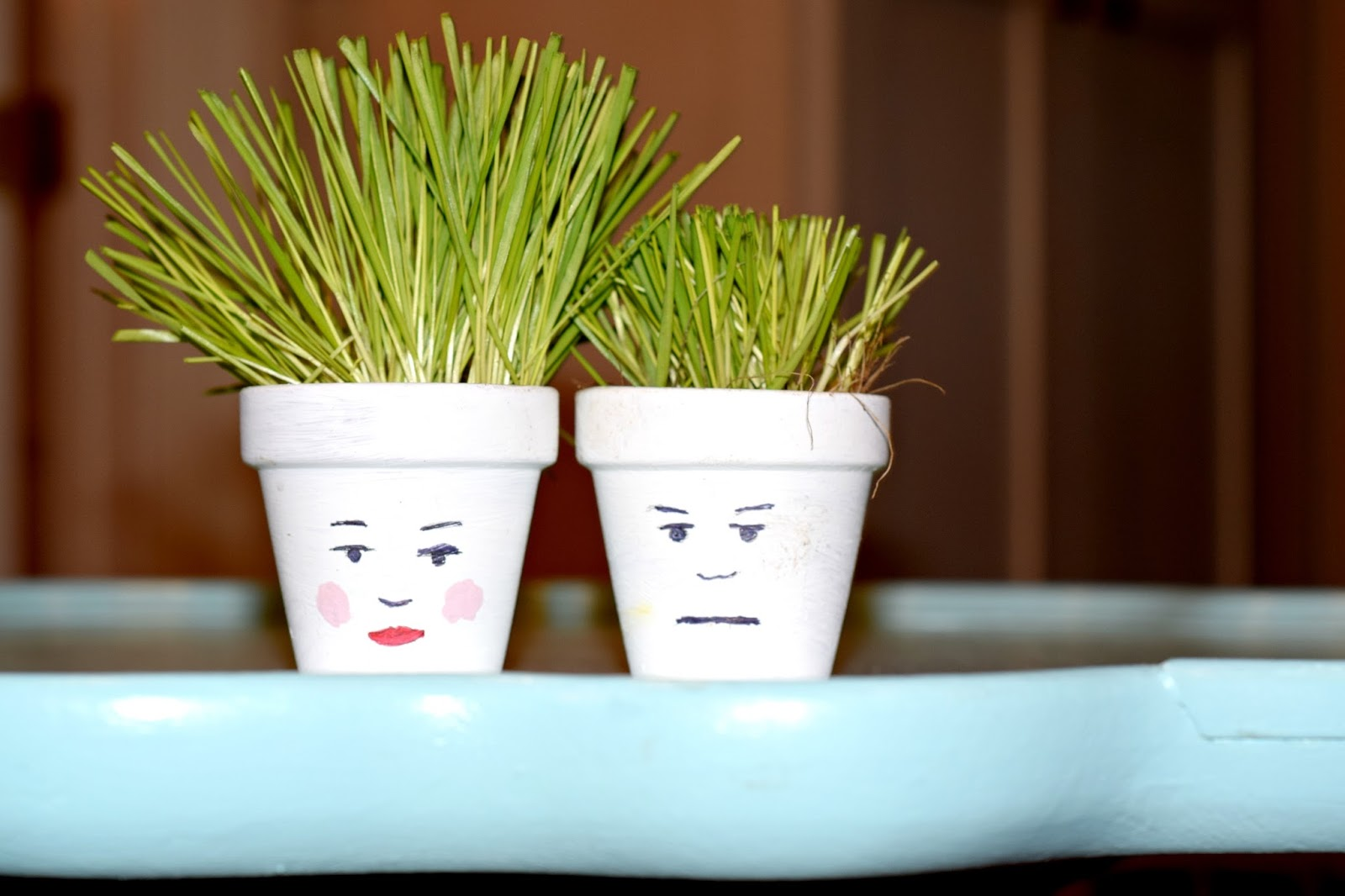 Spring Crafting Diy Painted Pot Faces With Wheat Grass